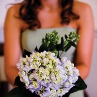 Bridesmaids, Bridesmaids Dresses, Fashion, Bouquet, Wedding, Hydrangeas, Dallas, Allison davis photography
