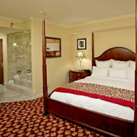 Honeymoon, Destinations, Honeymoons, Rochester minnesota wedding hotel, Rochester marriott