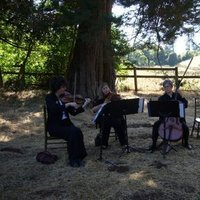 Trio, String, Eloquence