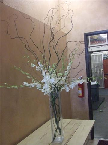 Flowers & Decor, white, Centerpieces, Flowers, Centerpiece, Orchid, Branches