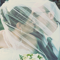 Veils, Fashion, Bride, Groom, Veil, Formal, Amaryllis images, Formal Wedding Dresses