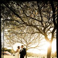 Bride, Groom, Harvard photography