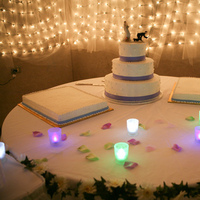 Reception, Flowers & Decor, Cakes, purple, green, cake, Lavender, Lights