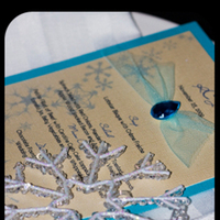 Planning, blue, planner, Winter, Modern, Wedding, Proposal, A, Event, Snowflake, Edmonton, A modern proposal event planning