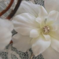Beauty, Flowers & Decor, white, Accessories, Flowers, Wedding, Hair, Elegant, Weddings, Simple, Head, Pretty, Pins, Piece, Etsy, Collection, Team, Ye bridal, Bloom