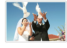white, Wedding, Doves, Release, Dove, Bay area doves
