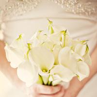 Flowers & Decor, white, Bride Bouquets, Flowers, Bouquet, Calla, Lilies, Everbright