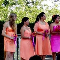 Bridesmaids, Bridesmaids Dresses, Fashion, orange, pink, And