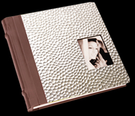 brown, silver, Custom, Album, Metallic, Cameo, Pictobooks, Aluminum