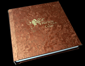 brown, gold, Monogram, Custom, Ice, Album, Emboss, Bijou, Pictobooks, Etch