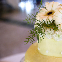 Inspiration, Reception, Flowers & Decor, Cakes, white, yellow, green, cake, Flowers, Board, Mankin photography