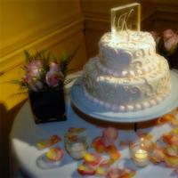 Cakes, white, pink, cake, inc, Tnt photography