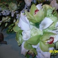 Flowers & Decor, white, green, Bride Bouquets, Flowers, Bouquet, Lindsy hines