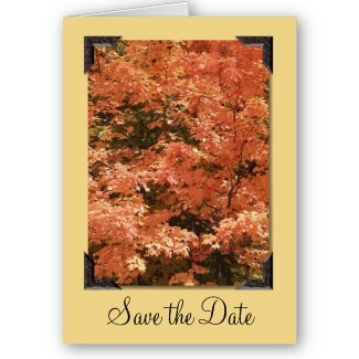 Stationery, orange, brown, Fall, Announcements, Invitations, Save-the-Dates, Save the date, Announcement, Autumn, Fall wedding, Fall leaves, Autumn leaves, Announce, Autumn wedding, A wedding collection by lora severson photography, Wedding save the date