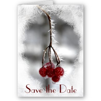 Stationery, white, red, Winter, Announcements, Invitations, Save-the-Dates, Save the date, Announcement, Snow, Winter wedding, Announce, A wedding collection by lora severson photography, Wedding save the date, Icy, December wedding, Red berries, January wedding, Frosty