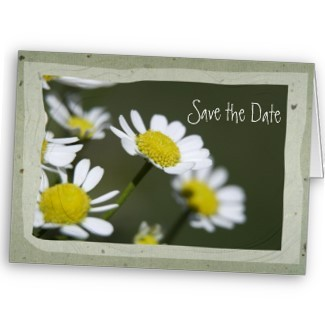 Flowers & Decor, Stationery, white, Announcements, Invitations, Save-the-Dates, Flower, Save the date, Floral, Daisy, Blossom, Announcement, Nature, Announce, A wedding collection by lora severson photography, Wedding save the date, Floral wedding, White daisy