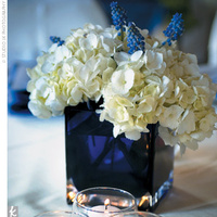 Inspiration, Flowers & Decor, white, blue, Flowers, Board