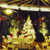 Reception, Flowers & Decor, Flowers, Table, Tree, Lights, Christmas, Settings, Terrace, Gramercy mansion