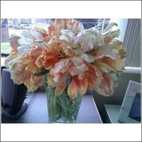 Ceremony, Reception, Flowers & Decor, Bridesmaids, Bridesmaids Dresses, Cakes, Fashion, white, orange, pink, green, cake, Ceremony Flowers, Bridesmaid Bouquets, Flowers, Tulips, Parrot, Flowerbudcom, Flower Wedding Dresses