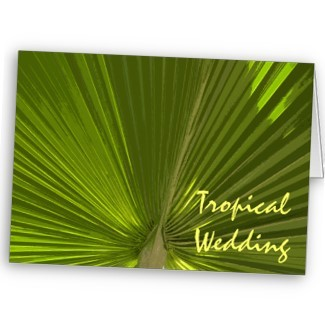 Stationery, green, Announcements, Invitations, Save-the-Dates, Save the date, Tropical, Ocean, Announcement, Beach wedding, Announce, Palm tree, A wedding collection by lora severson photography, Wedding save the date, Tropical wedding