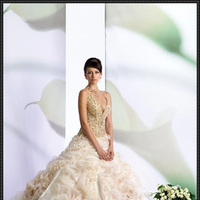 Wedding Dresses, Fashion, pink, dress, Roses, Gown, Wedding