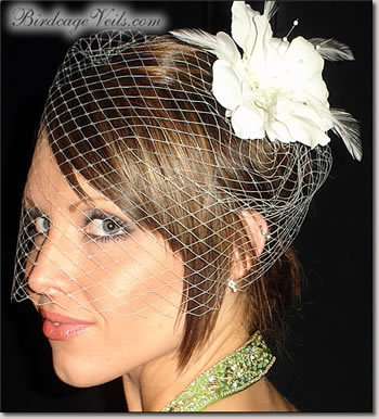Beauty, Ceremony, Flowers & Decor, Veils, Fashion, white, Veil, Hair, Birdcage