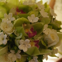 Flowers & Decor, Bridesmaids, Bridesmaids Dresses, Fashion, green, Bridesmaid Bouquets, Flowers, Sylvias flowers, Flower Wedding Dresses