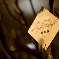 Stationery, purple, silver, Invitations, Tamara j events