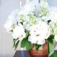 Flowers & Decor, white, Centerpieces, Flowers, Centerpiece, Peonies, Brook howell