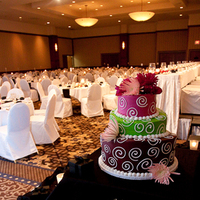 Reception, Flowers & Decor, Cakes, pink, green, brown, cake, Photobox studio