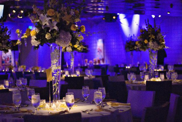 Reception, Flowers & Decor, yellow, blue, Centerpieces, Flowers, Centerpiece, 7, Degrees, Kimphil photography