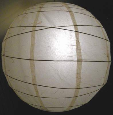 DIY, Reception, Flowers & Decor, Decor, brown, Lighting, Dc, Paper lantern