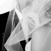 Wedding Dresses, Fashion, white, pink, dress, Bride, Groom, Shawn ingersoll photography