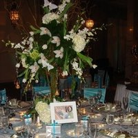 Reception, Flowers & Decor, white, blue, green, silver, Flowers, Aisle of dreams events
