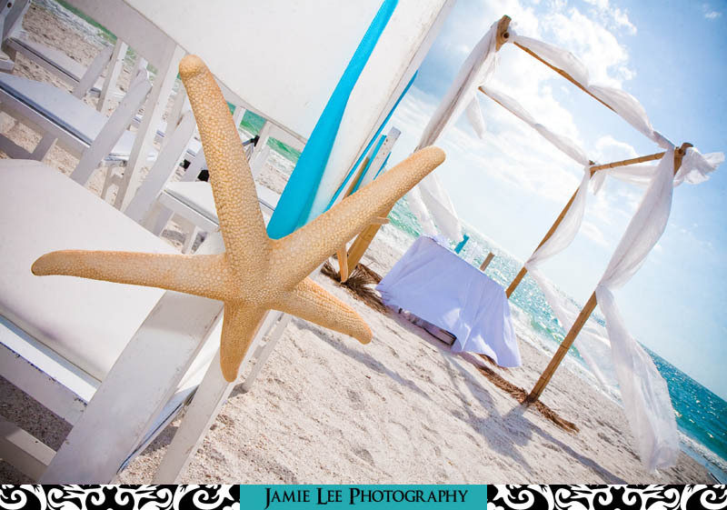 Ceremony, Flowers & Decor, white, blue, brown, Beach, Beach Wedding Flowers & Decor, Starfish, Jamie lee photography