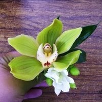 Flowers & Decor, green, Boutonnieres, Flowers, Orchid, Boutonniere, Cymbidium, Edens echo floral design event services