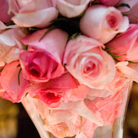 Reception, Flowers & Decor, white, pink, green, Centerpieces, Flowers, Centerpiece, Cesaro designs