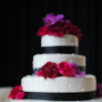 Cakes, white, pink, purple, black, cake, Michelle johnson photography