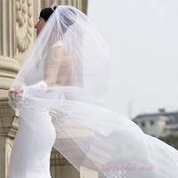 Beauty, Veils, Fashion, white, silver, Bride, Veil, Hair