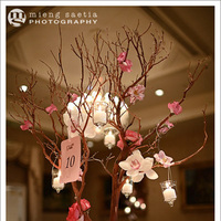 Reception, Flowers & Decor, pink, brown, Centerpieces, Centerpiece, Manzanita