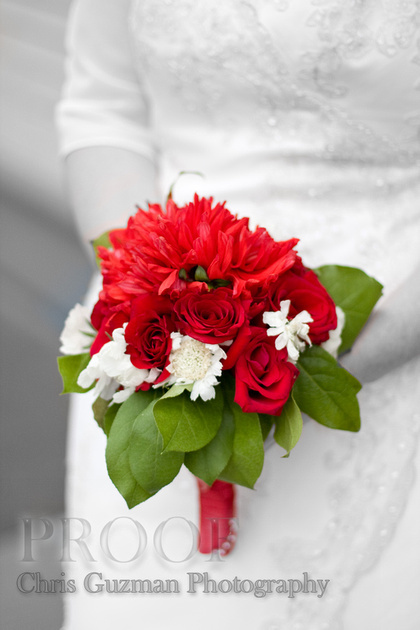 Flowers & Decor, red, Bride Bouquets, Bride, Flowers, Roses, Bouquet, Isolated, Chris guzman photography