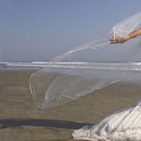 Wedding Dresses, Fashion, blue, dress, Cnaimagescom