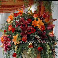 Flowers, Ceremony, orange, Flowers & Decor, Ceremony Flowers
