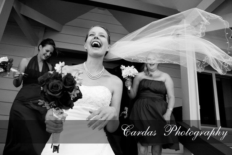 Bridesmaids, Bridesmaids Dresses, Veils, Fashion, white, Bride, Veil, Cardas photography