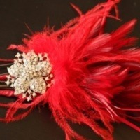 Beauty, Wedding Dresses, Fashion, red, dress, Feathers, Hair, Fascinator, Feather, Feather Wedding Dresses