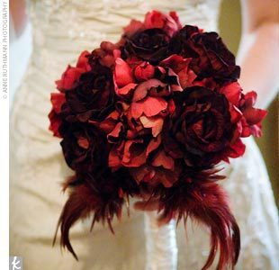 Beauty, Flowers & Decor, red, Feathers, Flowers, Roses, Feather, Velvet
