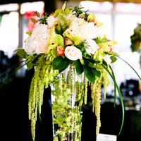 Reception, Flowers & Decor, green, black, Centerpieces, Flowers, Damask, Trefethen floral design