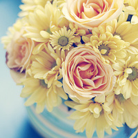 Ceremony, Reception, Flowers & Decor, white, yellow, orange, pink, red, purple, blue, green, brown, black, silver, gold, Ceremony Flowers, Flowers, Wedding, Triple 8 photography