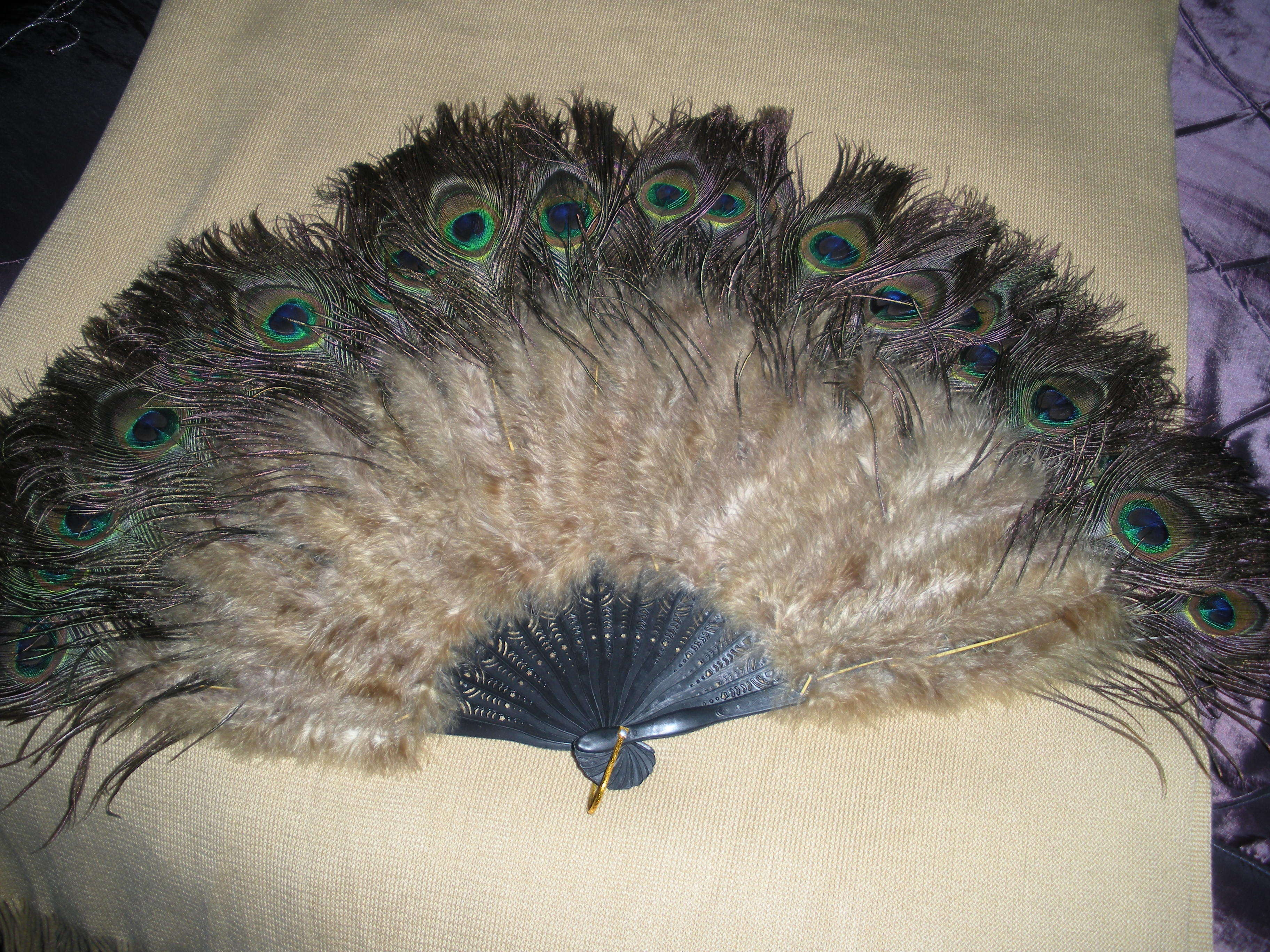 Fan, Peacock feather