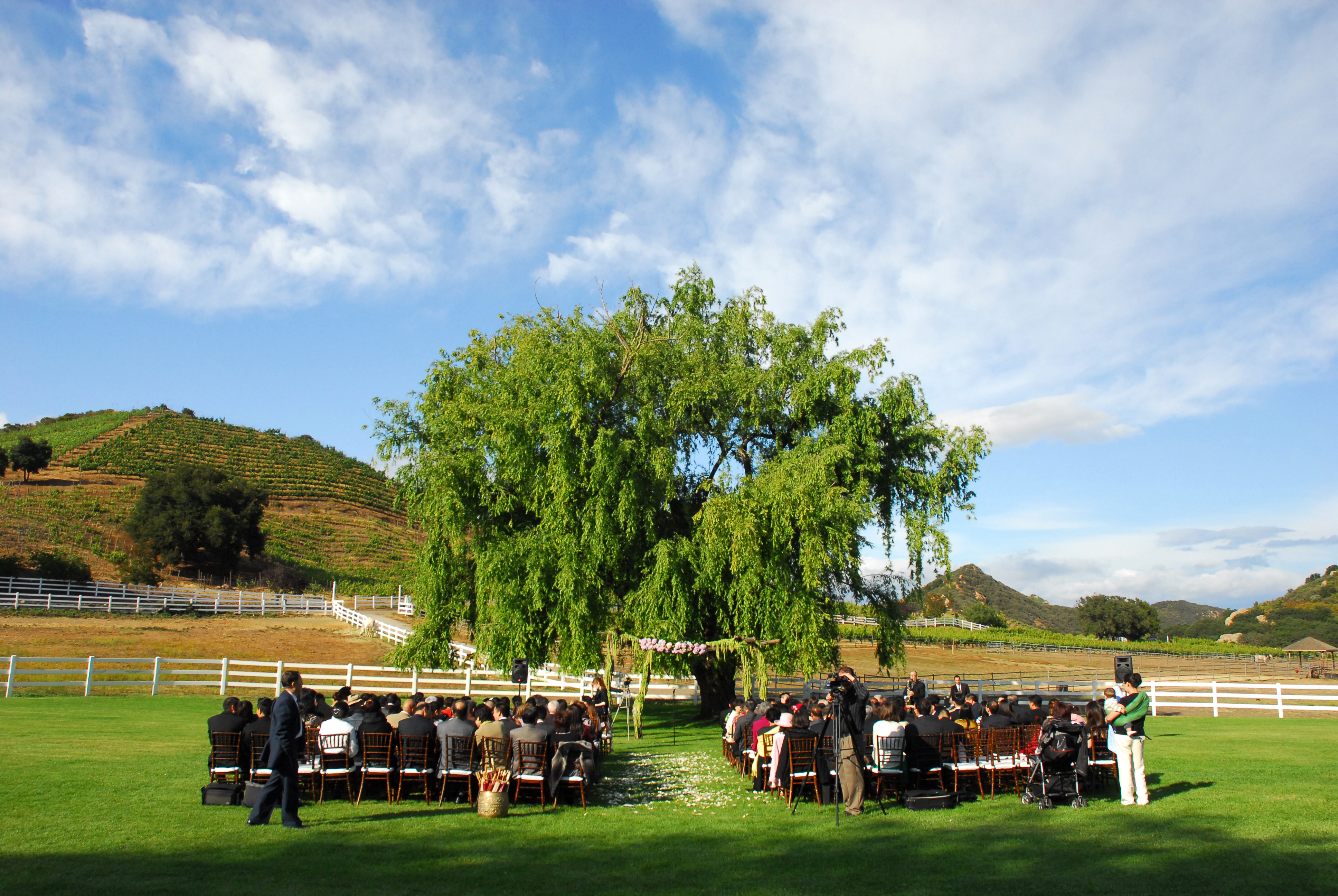 Ceremony, Flowers & Decor, pink, blue, green, brown, Guests, Scenery
